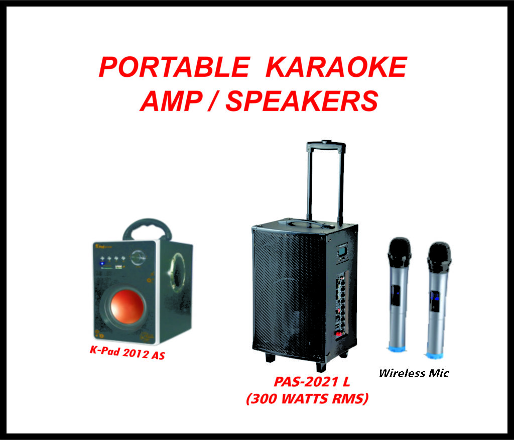Portable Karaoke Amp/ Speakers